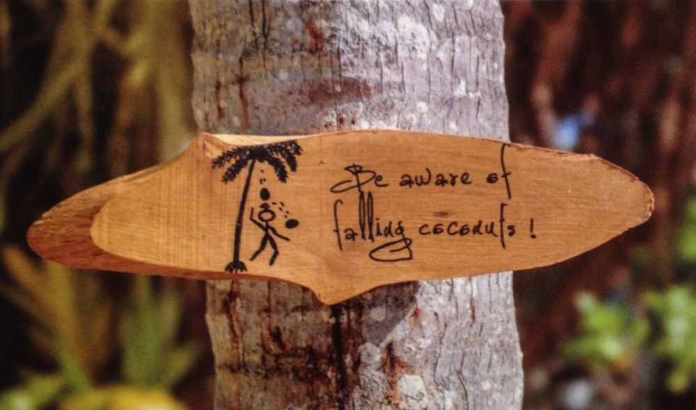 Pourquoi j'ai peur des noix de coco ?!?! (4/4)